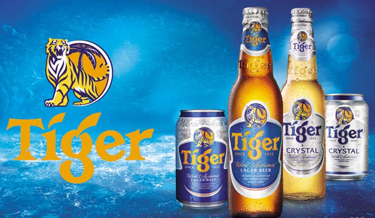 Tìm hiểu về các loại bia Tiger, giá bán và nồng độ cồn của từng loại