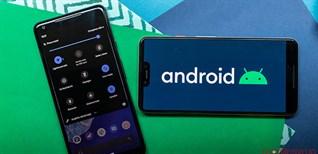 Điện thoại nào được cập nhật Android 10? Lịch cập nhật Android 10 của một số hãng smartphone