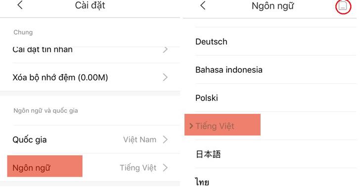 Chọn Ngôn Ngữ, click vào Tiếng Việt