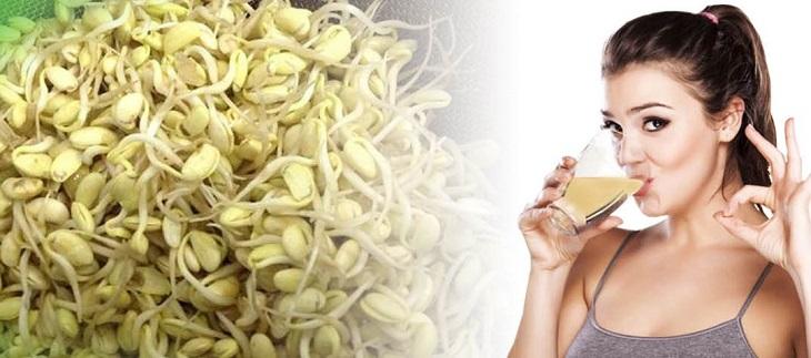 Mầm đậu nành mang đến nhiều công dụng