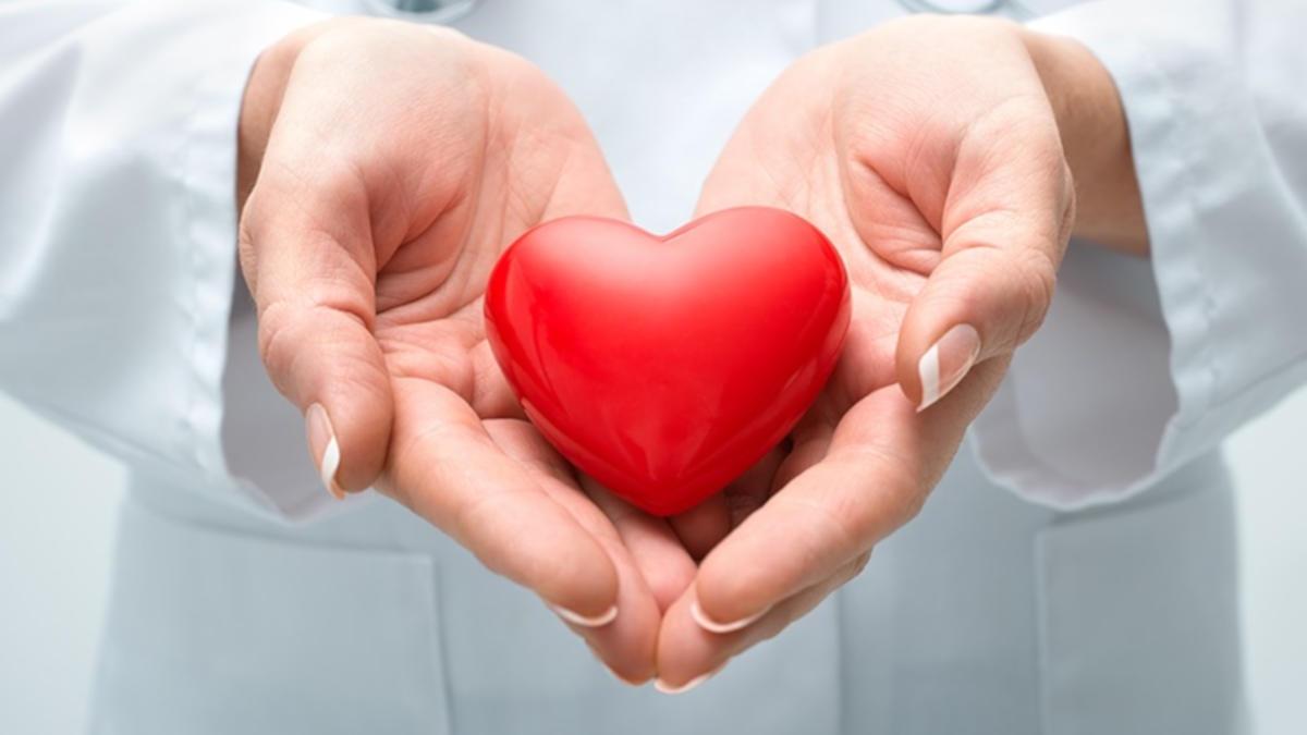Dầu mè giúp bảo vệ sức khỏe tim mạch
