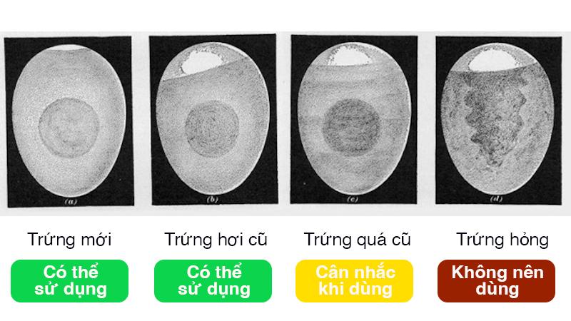Cách kiểm tra trứng hết hạn bằng cách soi đèn