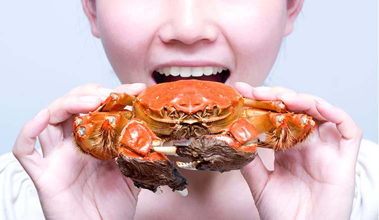Thích ăn cua cũng đừng ăn bộ phận này của cua vì chứa rất nhiều chất bẩn