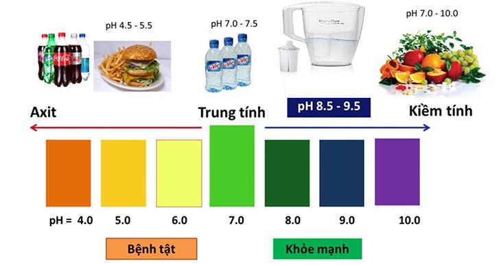 Thang đo độ PH trong cơ thể người