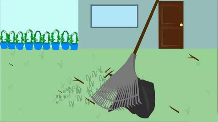 Dọn dẹp thường xuyên, bảo quản thức ăn thừa trong tủ lạnh, đậy kín