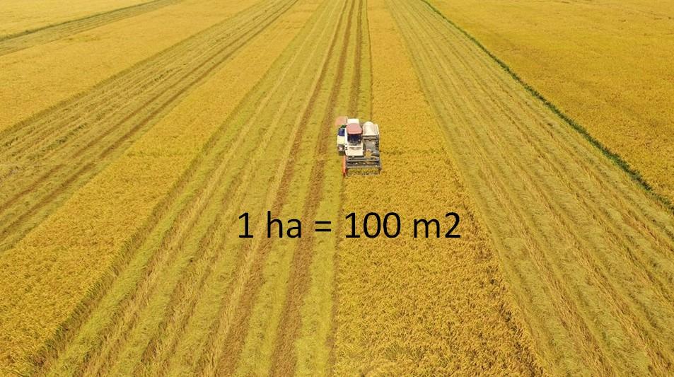 Diện tích đất đai thường được đo với đơn vị là Héc-ta