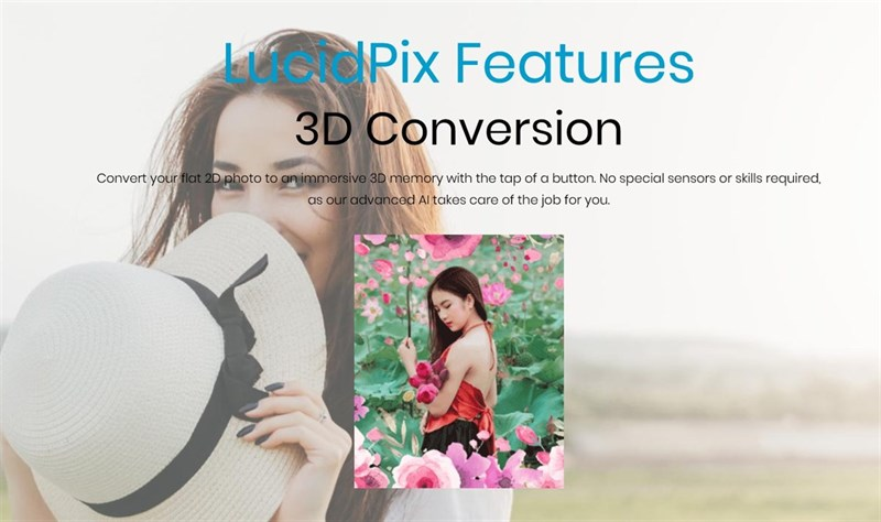 LucidPix Feature