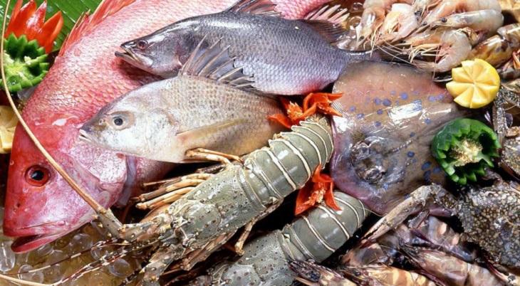 Cá và hải sản là nguồn chất đạm và bổ sung axit béo Omega-3