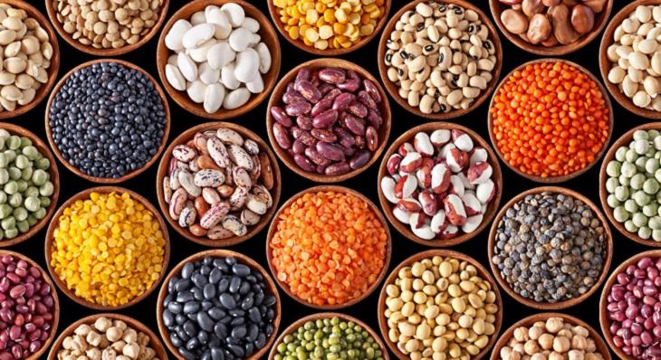 Các loại đậu cung cấp protein có thể thay thế cho thịt, cá và sữa
