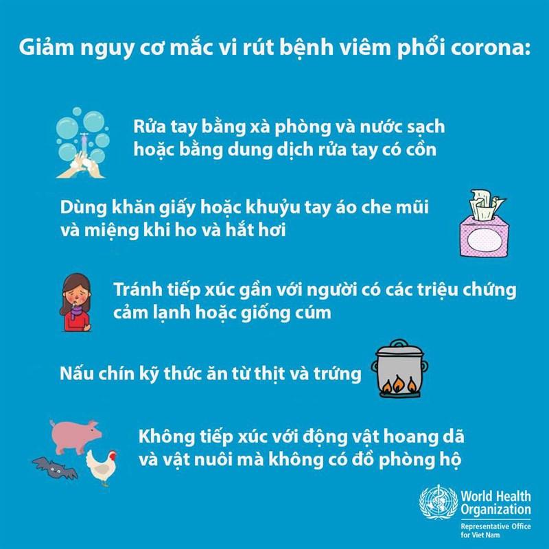 phòng tránh dịch cúm virus corona