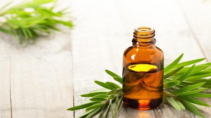 Tinh dầu trà tràm (tea tree oil)