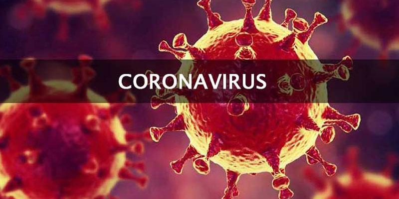 Virus Corona sống ở bao nhiêu độ C?