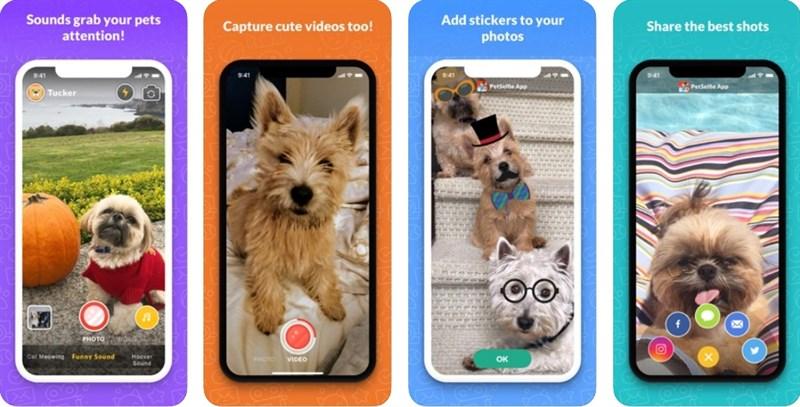 PetSelfie- Dog and Cat Camera