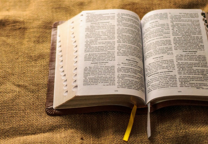 Chọn một dòng từ của cuốn sách yêu thích