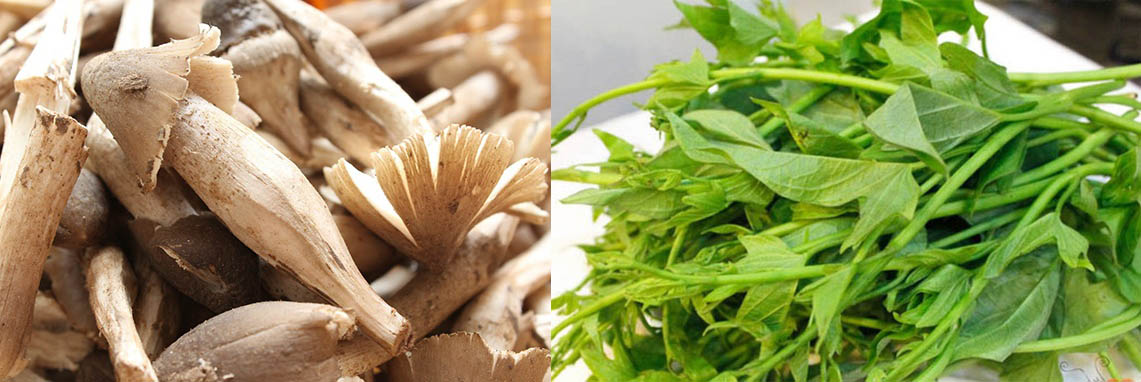 nguyên liệu chính nấu nấm mối nấu canh rau