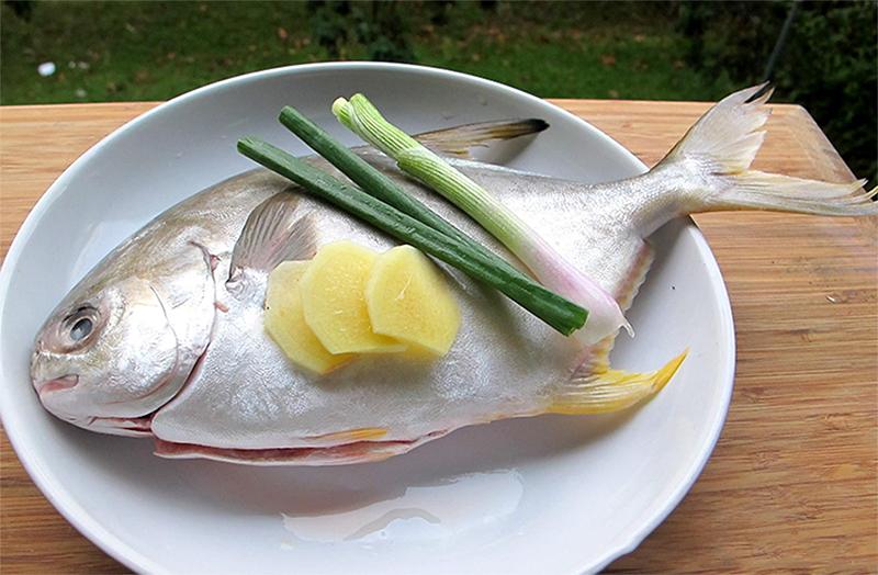Nguyên liệu món ăn cá chim kho riềng và cá chim kho gừng ớt