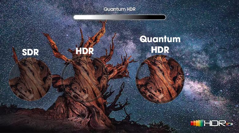 Quantum HDR 16X