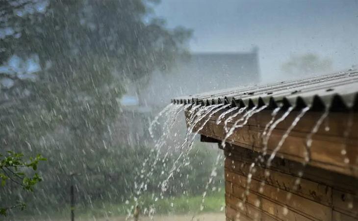 Không nên sử dụng nước mưa đầu mùa