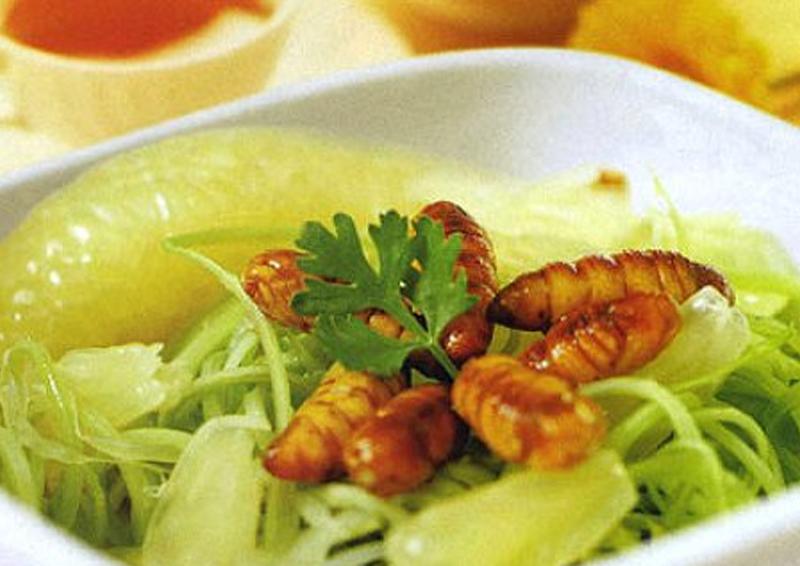 Một vài món ăn ngon, bổ dưỡng được chế biến từ nhộng tằm