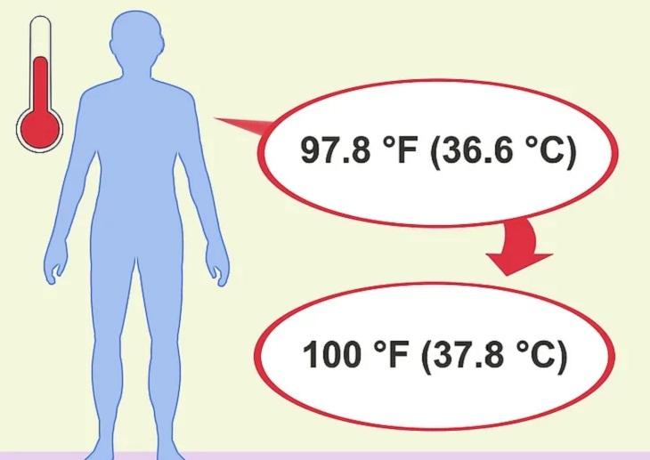 Hiểu sơ qua nhiệt độ của các bộ phận trên cơ thể và đặc điểm đối tượng