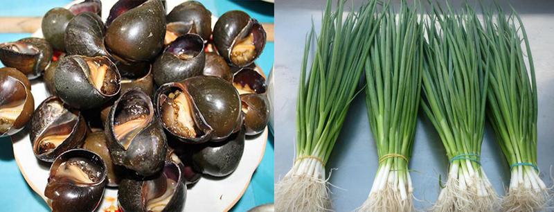 Nguyên liệu món ăn ốc bươu nướng tiêu xanh và ốc bươu nướng mỡ hành