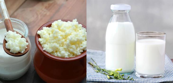Nguyên liệu món ăn sữa chua từ nấm sữa kefir