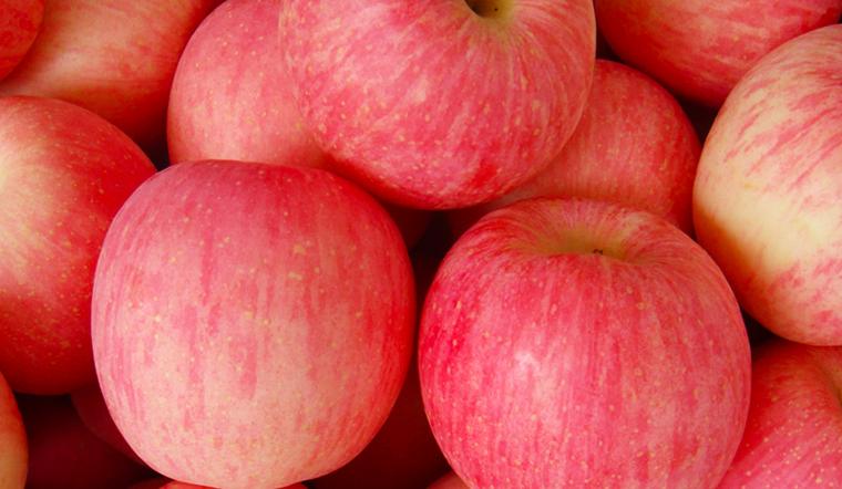 Chứng nhận nhập khẩu của táo Fuji đang bán tại Bách hoá XANH