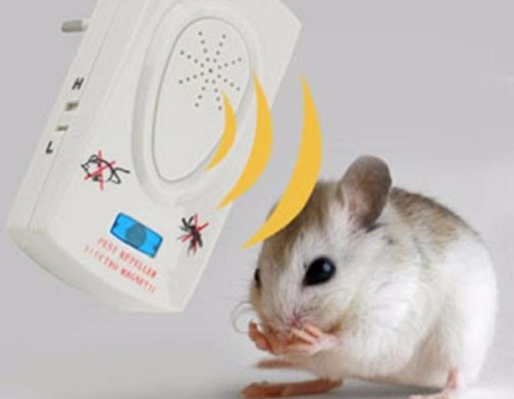 Máy đuổi chuột bằng sóng âm