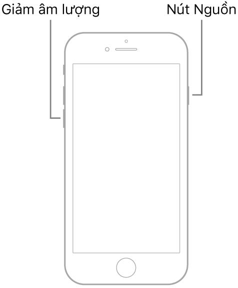 Cách buộc khởi động, khôi phục và vào chế độ DFU trên iPhone