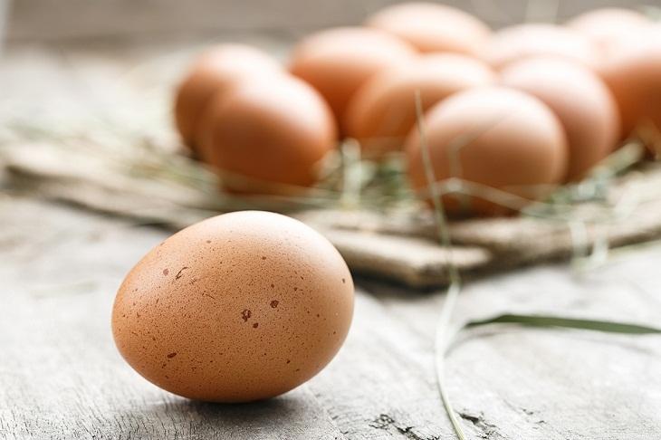 Đặc điểm của trứng