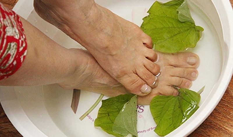 Ngâm chân bằng lá lốt có tác dụng gì? Cách ngâm chân với lá lốt ?
