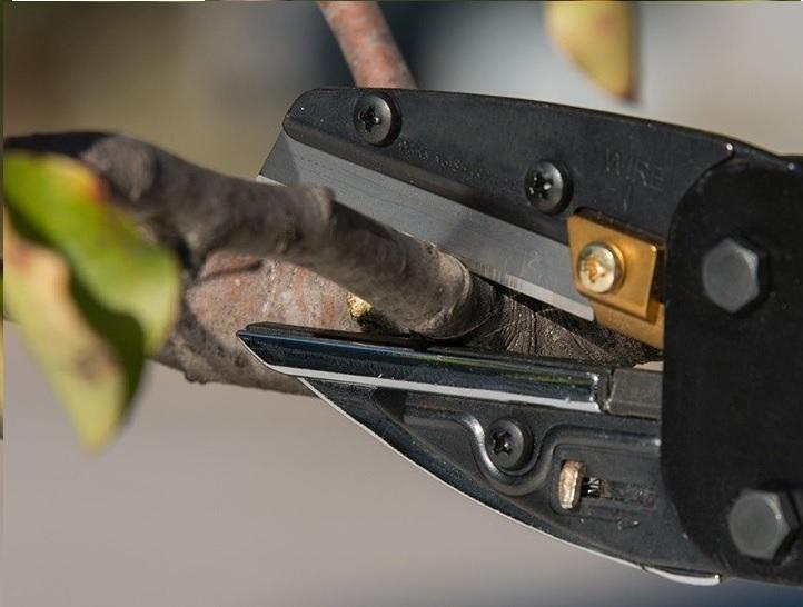 Không dùng kìm thông thường để cắt các vật quá cứng