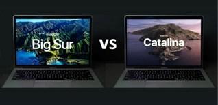 So sánh macOS Big Sur và macOS Catalina: Có đáng để nâng cấp?