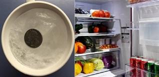 Tác dụng không ngờ của việc đồng xu trong tủ lạnh trước khi ra khỏi nhà bạn nên biết