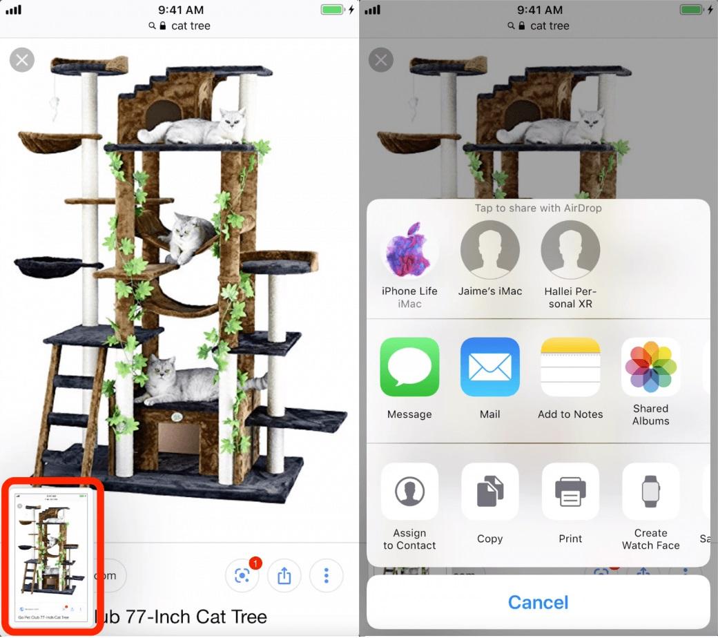 Chụp và chia sẻ nhanh Screenshot