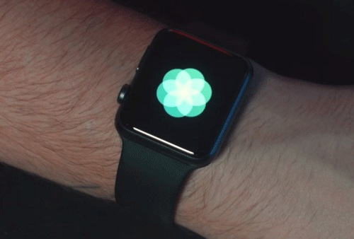 Dùng ứng dụng Breathe trên Apple Watch