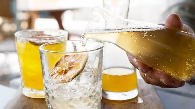 Trà kombucha có chứa cồn không? Uống kombucha có bị say hay không?