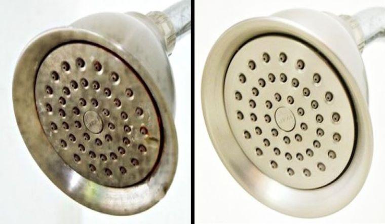 Bạn có biết rằng trong vòi hoa sen chứa đầy cặn bẩn và vi khuẩn? Cách vệ sinh vòi hoa sen chuẩn nhất