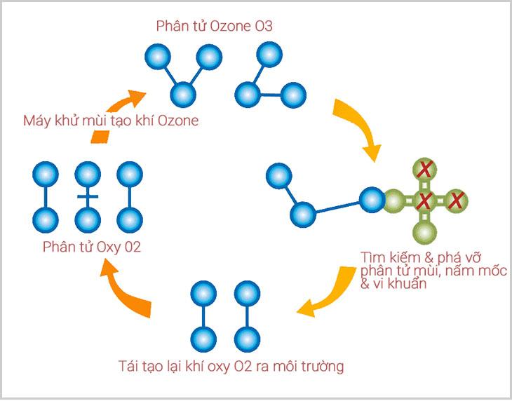 Quy trình khử trùng bằng ozone trên máy lọc không khí