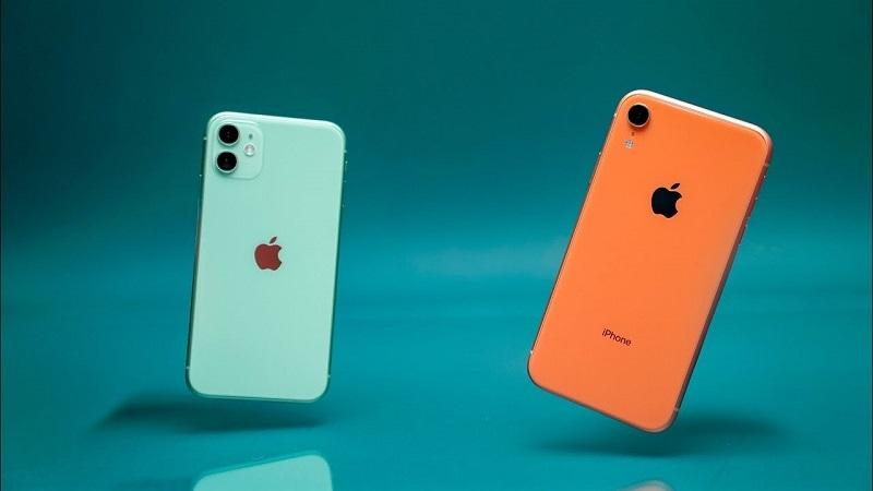 iPhone 11 và iPhone Xr