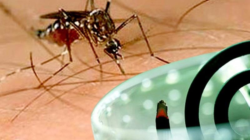 tiêu chí khi chọn mua nhang muỗi cho gia đình