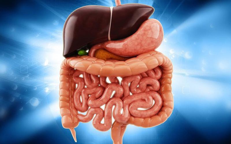 Detox giúp thanh lọc gan