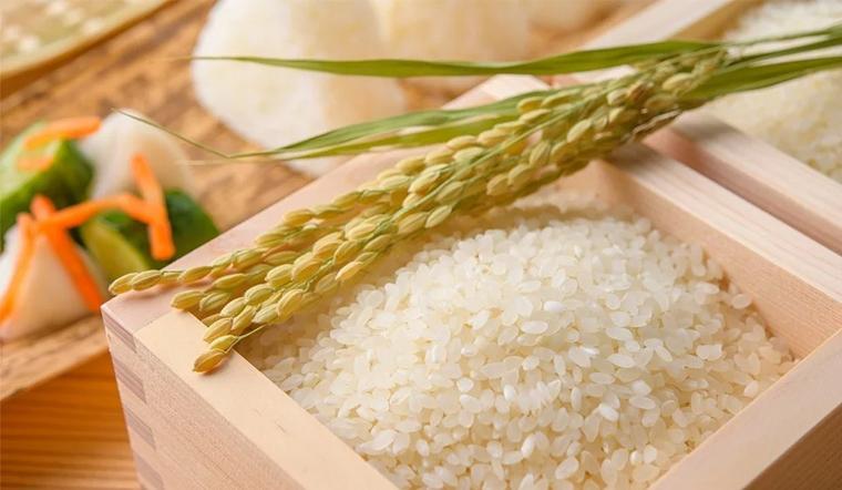 Gạo Nhật là gạo gì? Có những loại gạo Nhật nào ở Bách hóa XANH?