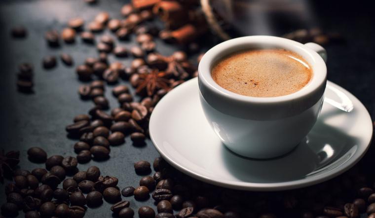 Các giống cây cà phê phổ biến ở Việt Nam