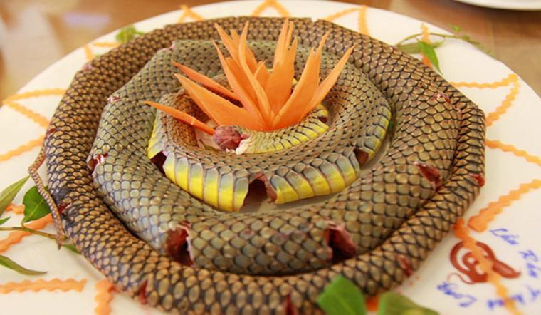 Thịt rắn có thể chế biến thành những món ngon nào?