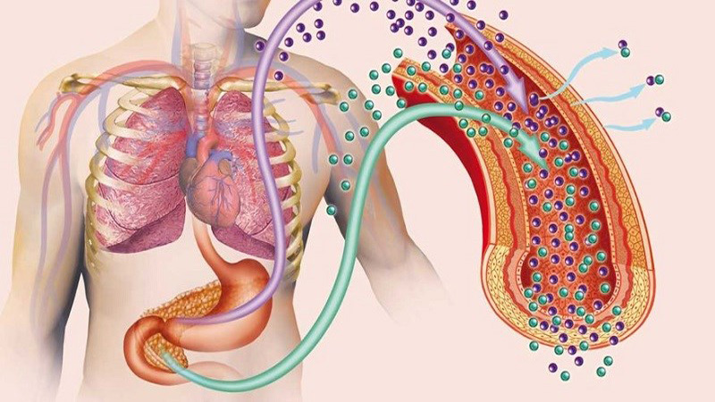 Giảm nguy cơ kháng insulin