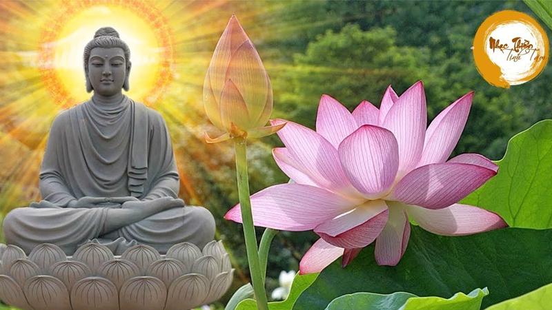 Nhạc Thiền Tịnh Tâm