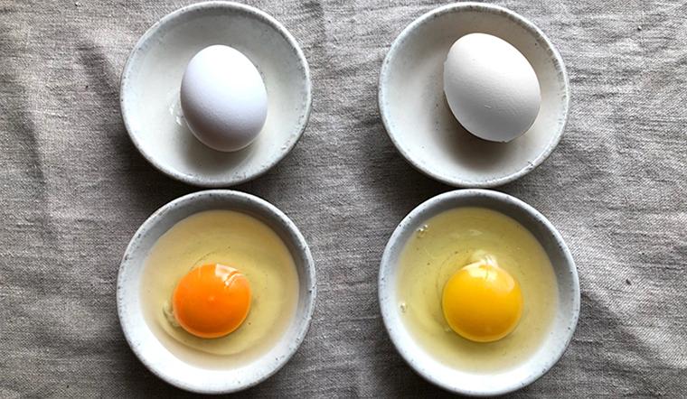 Có phải ăn trứng lòng đỏ đậm bổ hơn ăn trứng lòng đỏ nhạt không?
