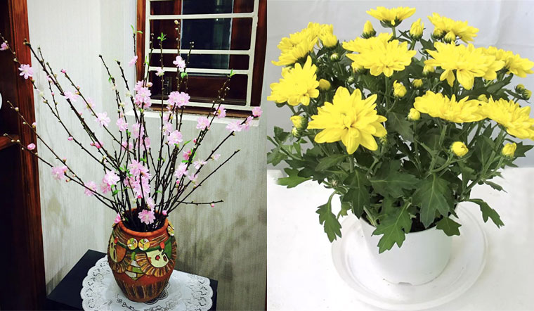 7 cách cắm hoa đẹp ngày Tết để may lại may mắn cho cả gia đình