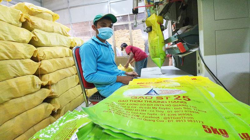Thông tin về loại gạo ST25